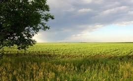 Как проходит отчуждение земельного участка